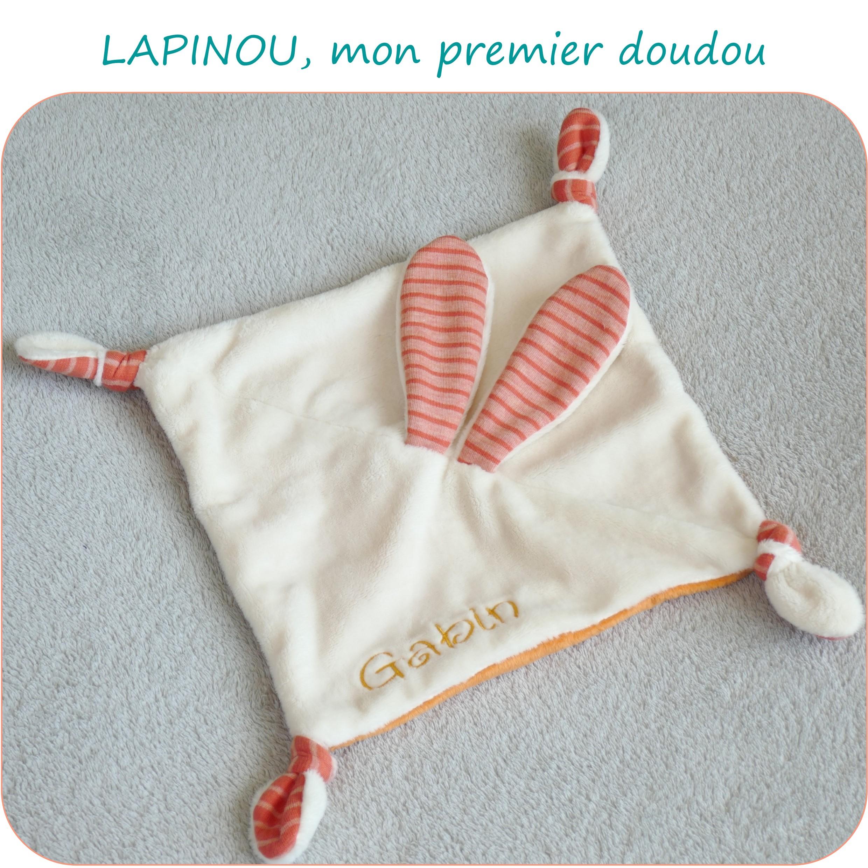 LAPINOU-PresentationSite_PetitsDom