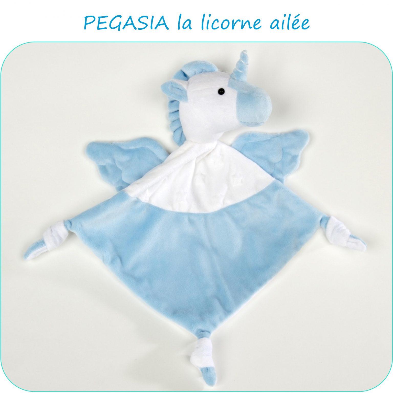 PEGASIA-PresentationSite_PetitsDom