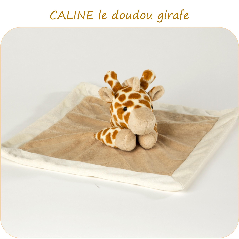 CALINE-PresentationSite_PetitsDom